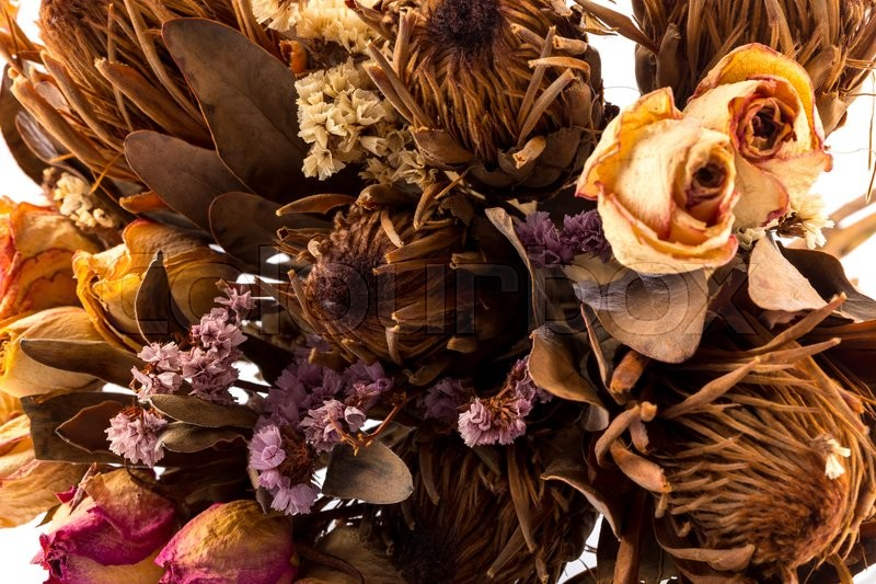 Decoration of dried flowers. Roses on white background, stock photo