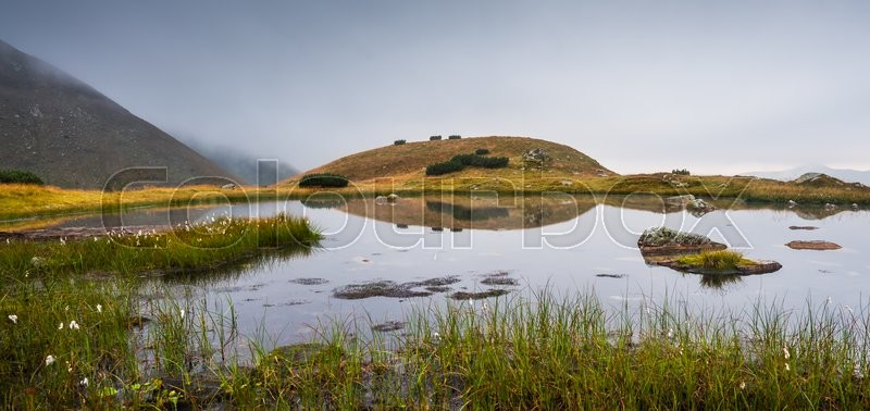 Stock image of 'Small Tarn with Rocks in Foggy West Tatra Mountains'