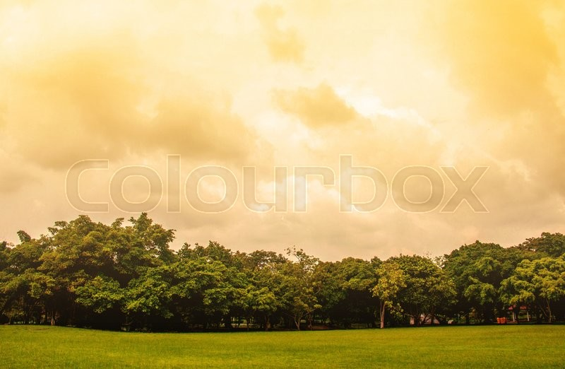 Stock image of 'Lawn and natural global warming.'