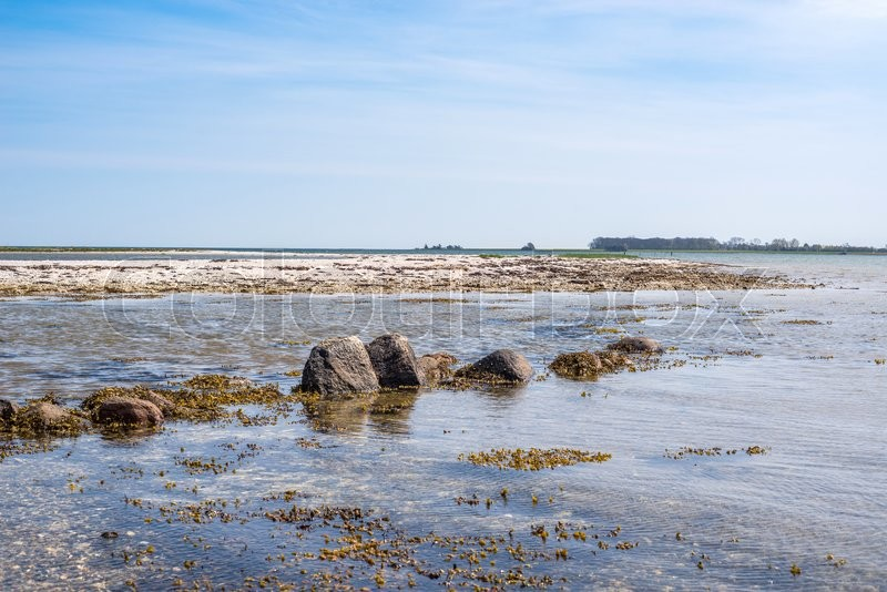 Stock image of 'Seashore with rocks in the water in daylight'