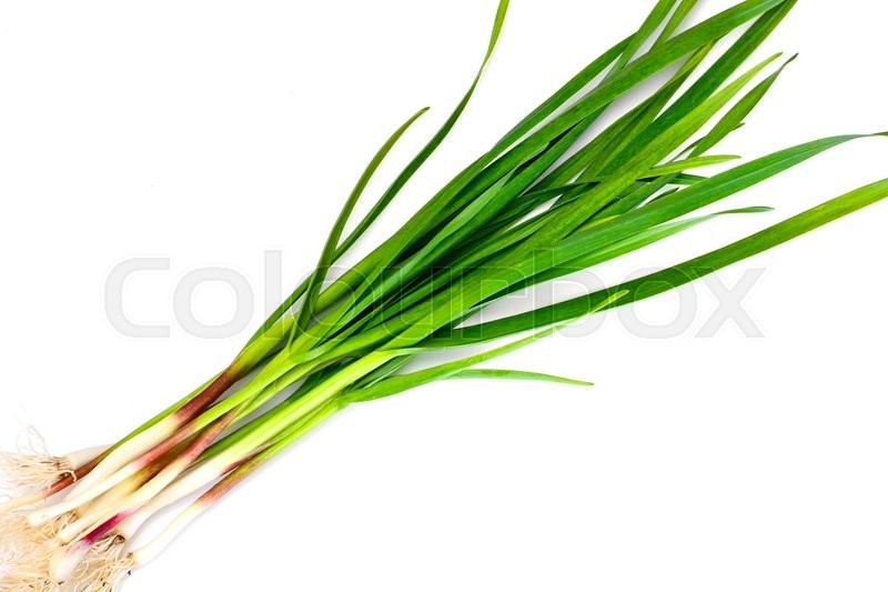 Stock image of 'Green Garlic on White Background Studio Photo'