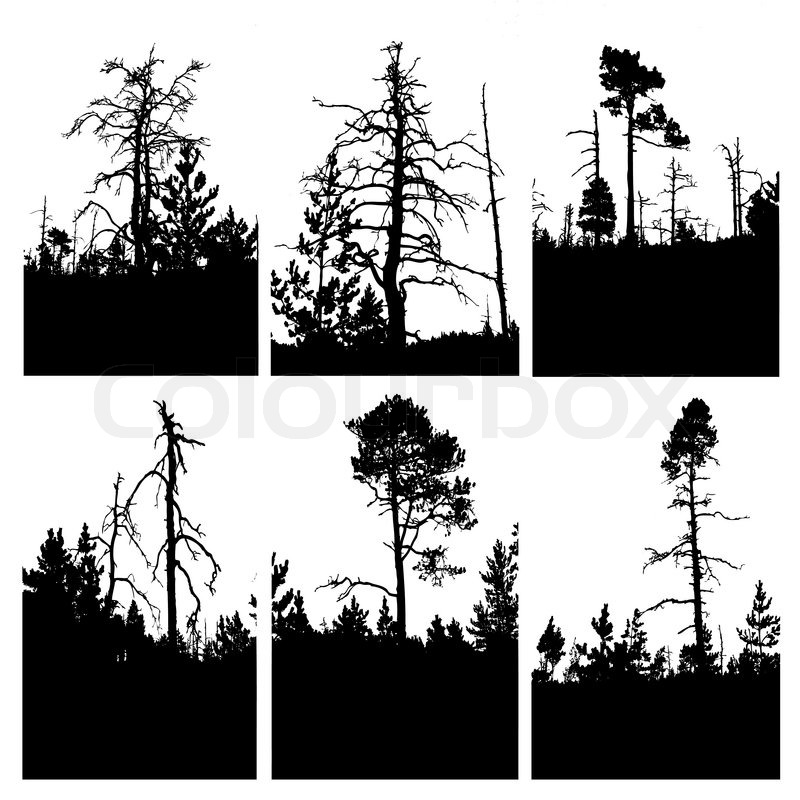 Tree Line Art Design : Vector silhouettes tree on white background stock
