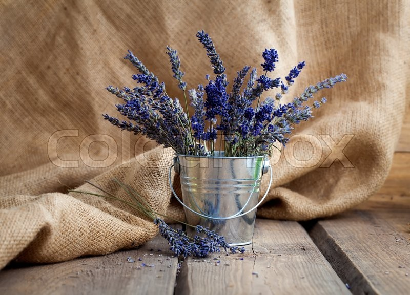 Stock image of 'Lavender flowers in an iron bucket on a wooden background'