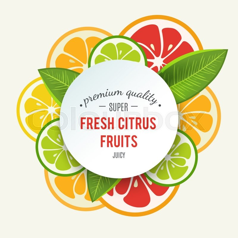 Stock image of 'Banner with stylized citrus fruit and splashes. Grapefruit, lime, lemon and orange. Citrus mix isolated on white background can be used for cafe menu design. Bright stylish juicy icon design. '