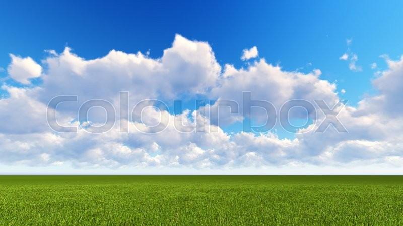 Stock image of 'field of grass and perfect blue sky'