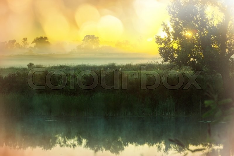 Stock image of 'Unusual river fog in summer season'