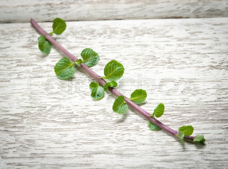 Stock image of 'Fresh mint on white wooden table,Top view'
