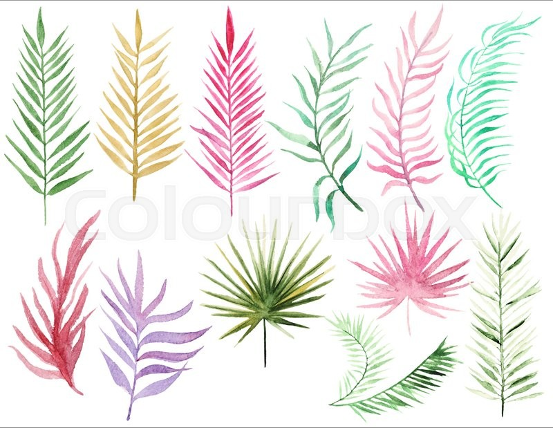 Stock image of 'Watercolor set with tropical palms leaves. Palm leaves elements for your design. Collection Palm leaves'