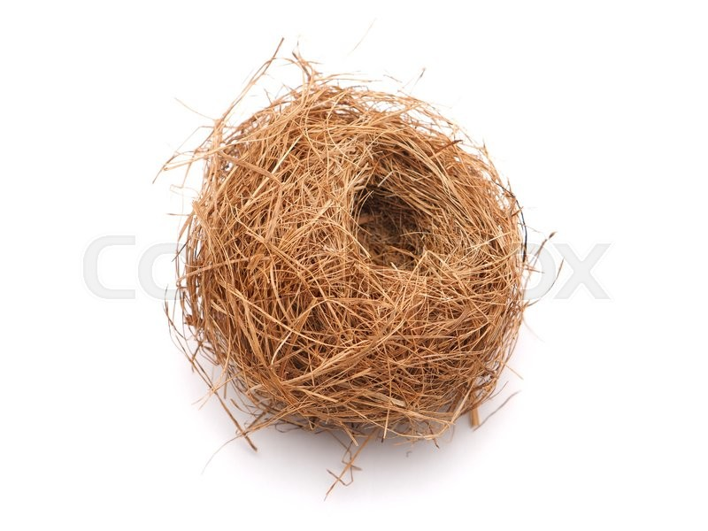 Stock image of 'Bird's nest on a white background'