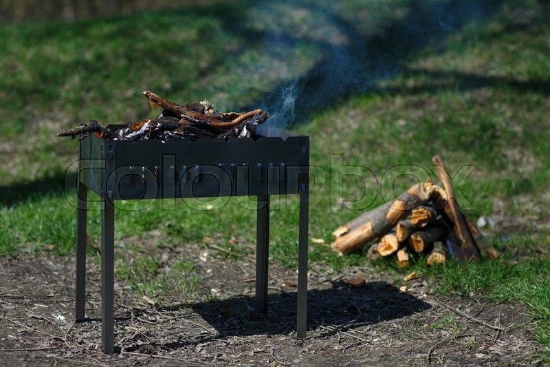 Stock image of 'Delicious grilled chiken meat over the coals on a barbecue'
