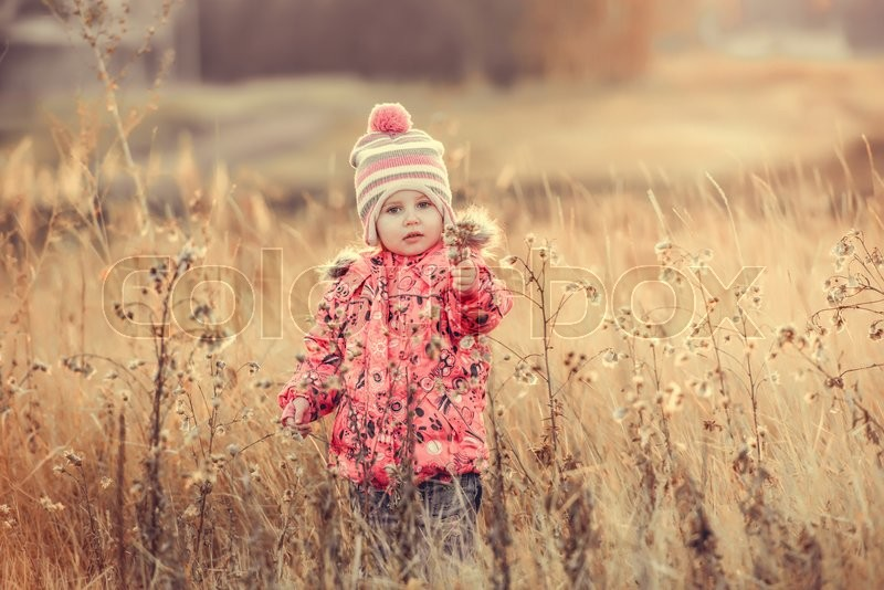 Stock image of 'cute little girl in a field in fall at sunset '