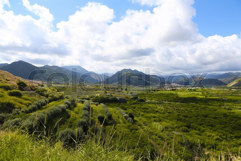 Stock image of 'Photo of green valley in mountain in Sicily'