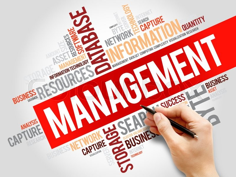 Stock image of 'Management word cloud, business concept'