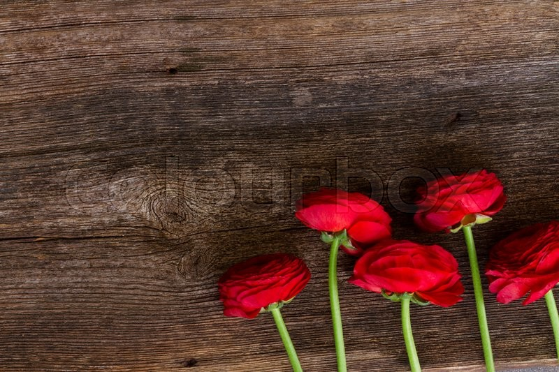 Stock image of 'posy of red buds of ranunculus flowers on wooden nackground'