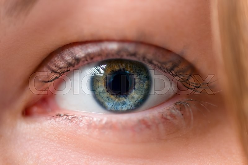 Stock image of 'One eye in the frame close up'