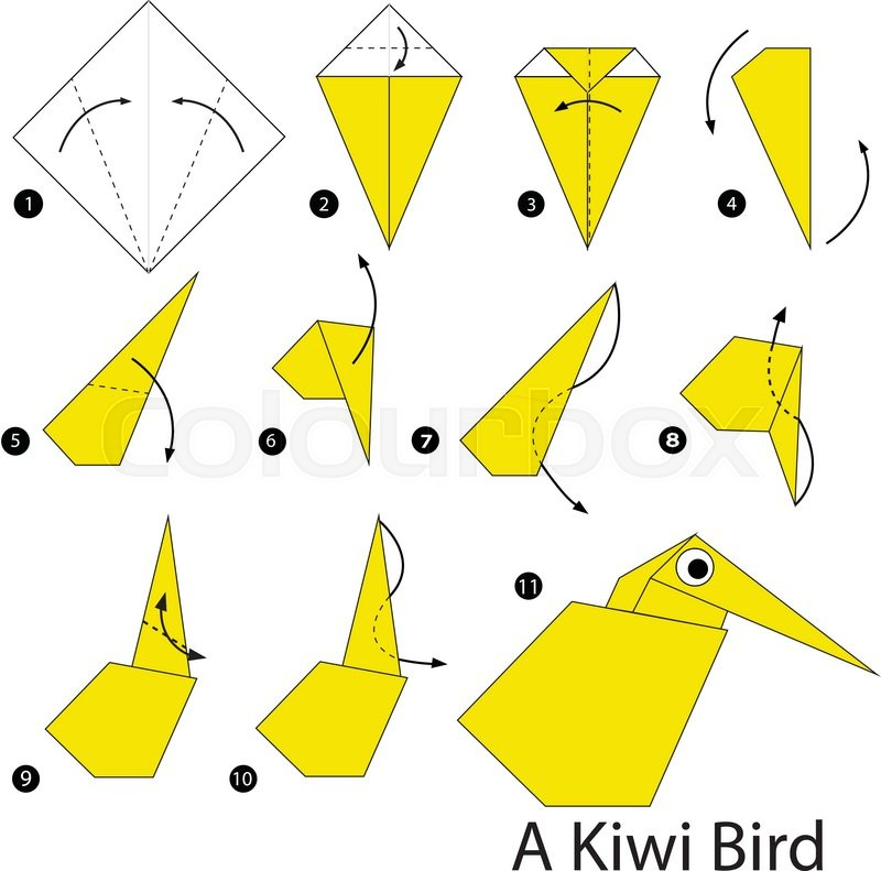 Step By Instructions How To Make Origami A Kiwi Bird