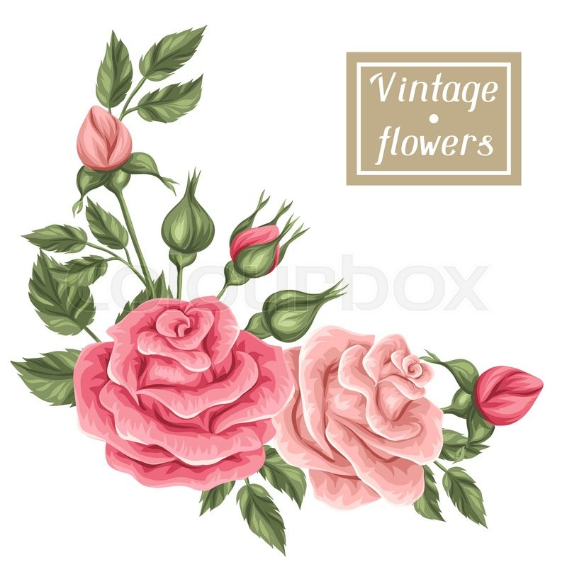 Floral Wedding Card Manufacturer From Hosur: Floral Element With Vintage Roses. Decorative Retro