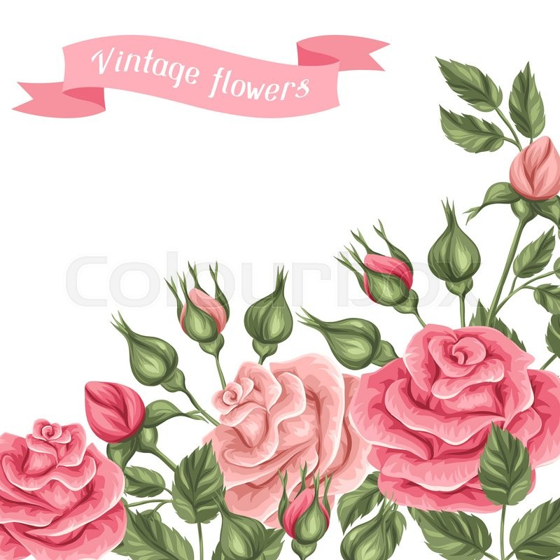 background with vintage roses stock vector colourbox background with vintage roses
