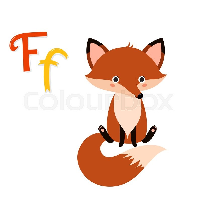 Cute Zoo Alphabet F Letter Funny Cartoon Fox Design In A Colorful Style Kids Abc Education Vector Illustration Isolated On White