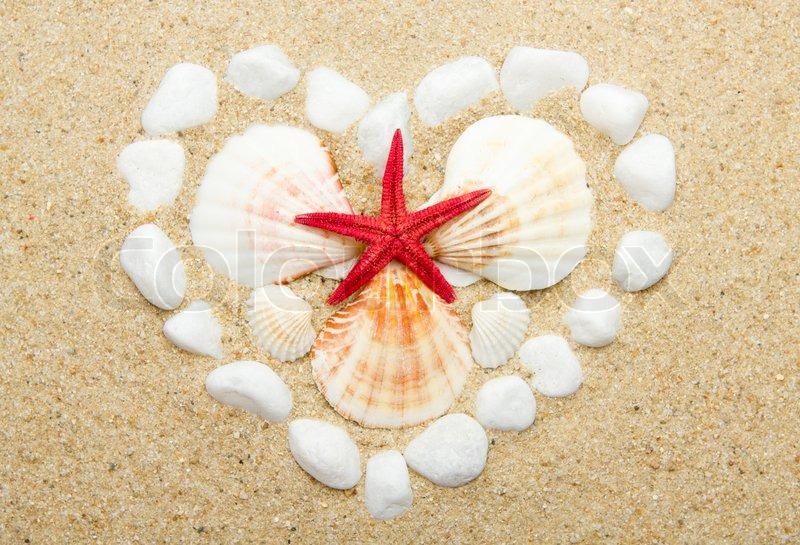 Dating seashells