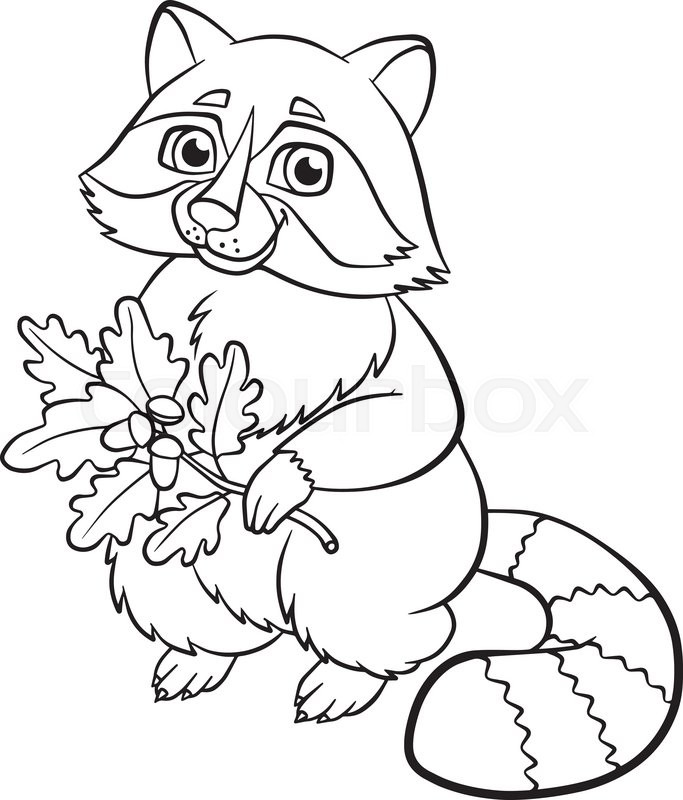 Raccoon Coloring Pages - GetColoringPages.com | 800x683