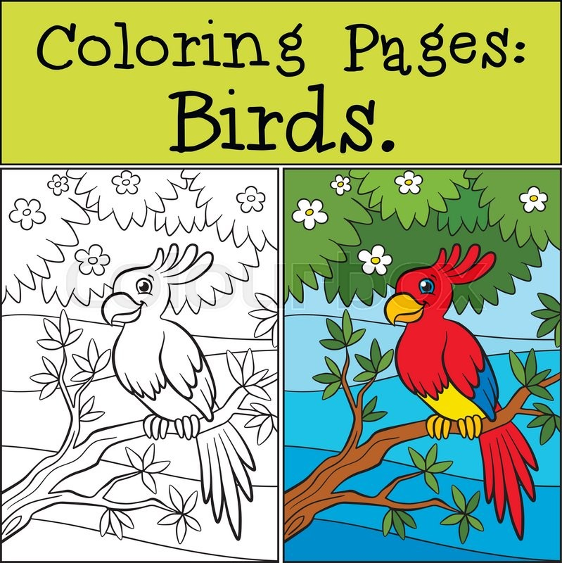 Coloring Pages Birds Little Cute Parrot Sits On The Tree Branch And Smiles