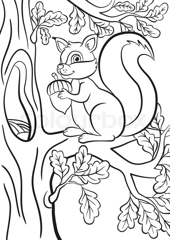 Coloring Page Little Cute Squirrel Sits On The Banch Of A Tree Smiles And Holds An Acorn In Hands