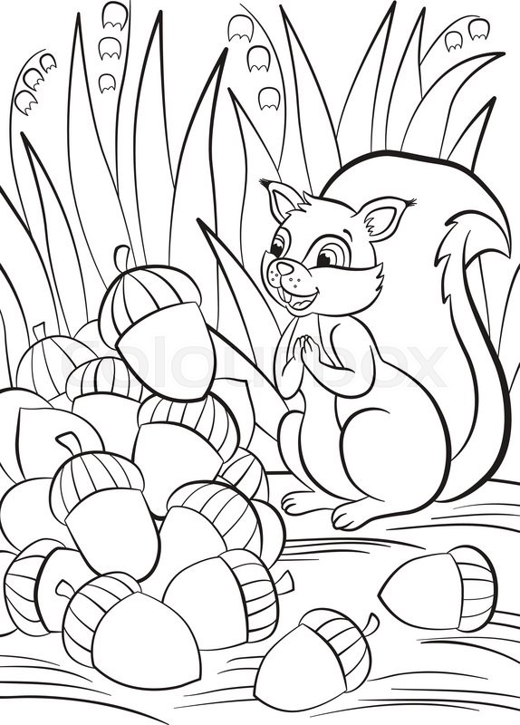 free coloring pages for squrrils - photo#7