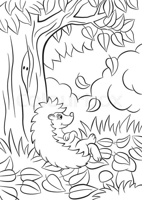 The Leaves Fall From Tree There Are Bushes Plants Grass And Mushrooms Around Hedgehog Is Happy Vector Stock Of Coloring Pages