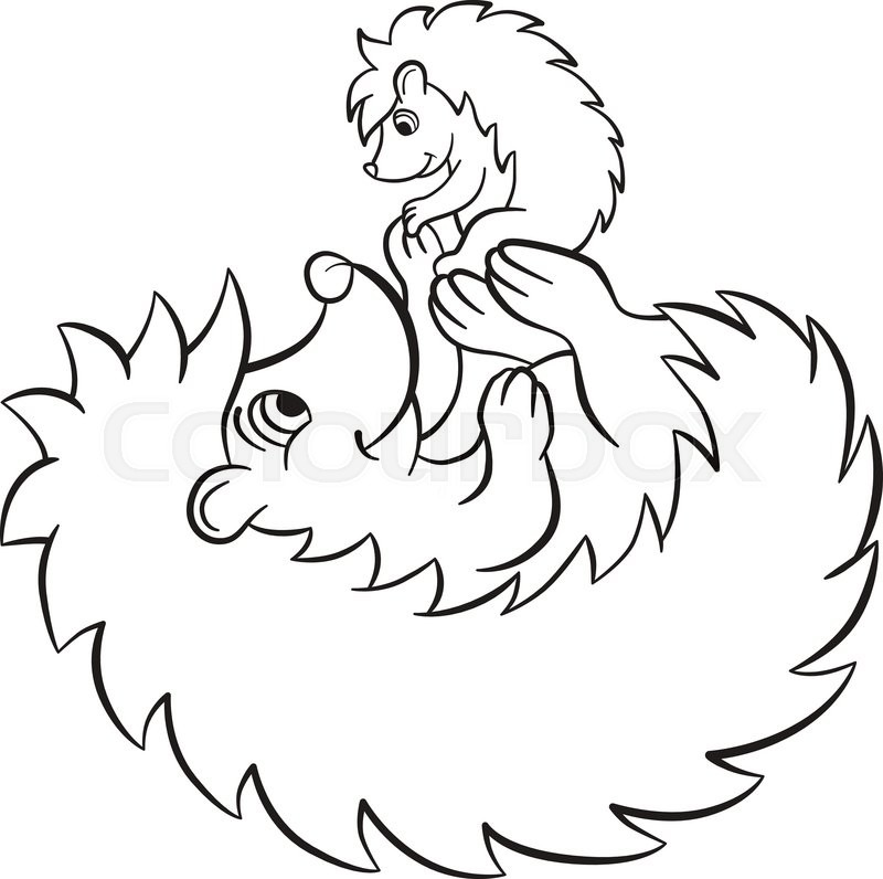 coloring pages the hedgegoh holds little cute hedgehog