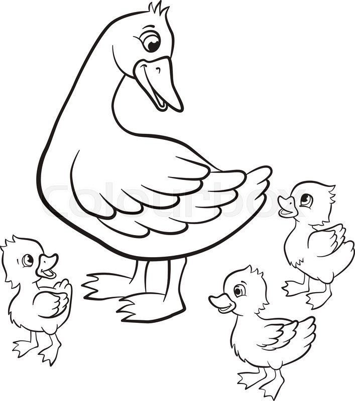 Coloring Pages Kind Duck And Free Stock Vector Colourbox