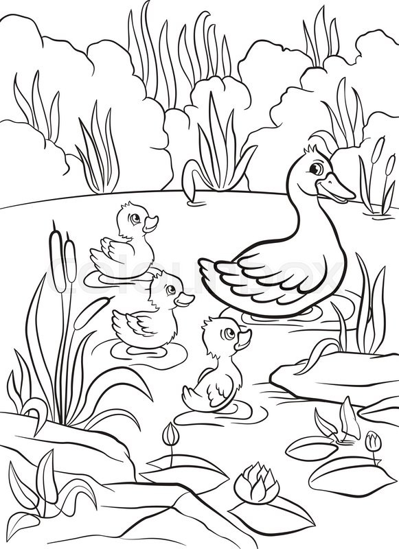 pond coloring pictures – lifewiththepeppers.com | 800x581