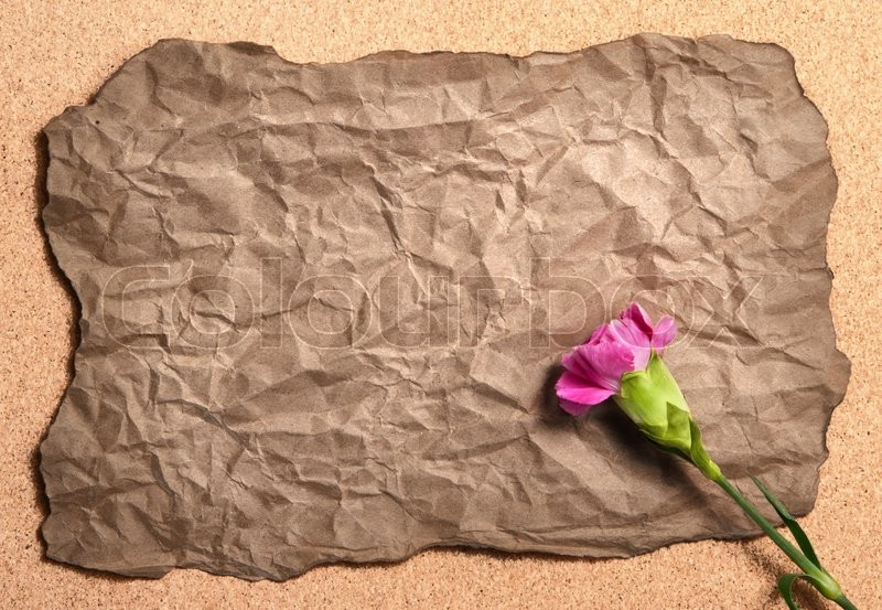Stock image of 'Recycle wrinkle paper with pink canation flower'