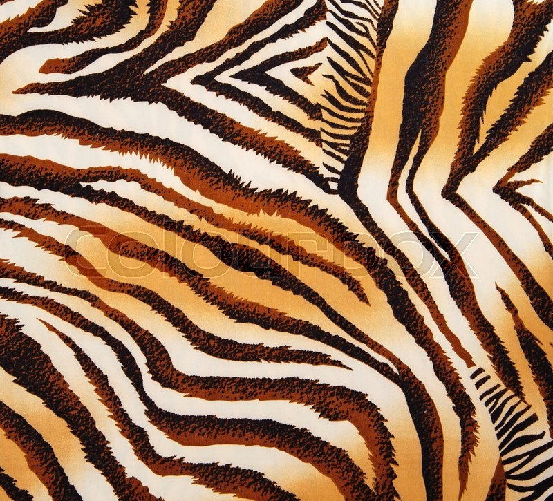 Stock image of 'Pattern of a tiger skin, excellent wildlife background'