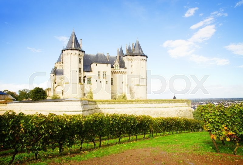 Stock image of 'Saumur castle and vineyards  in the Loire Valley, France, retro toned'