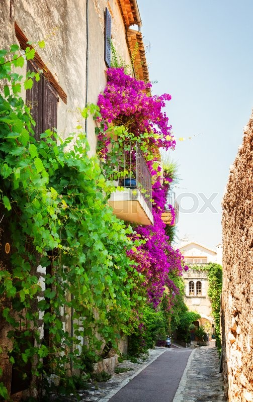 Stock image of 'beautiful old town street with leaves and flowers of Provence at summer day, France, retro toned'