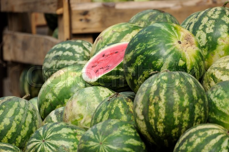 Stock image of 'Lots of ripe watermelon.'