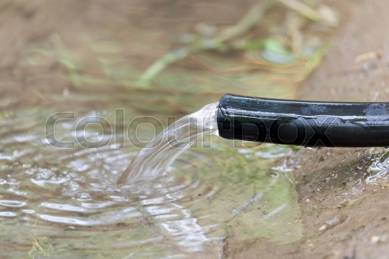 Stock image of 'Water flows from the hose into the ground'
