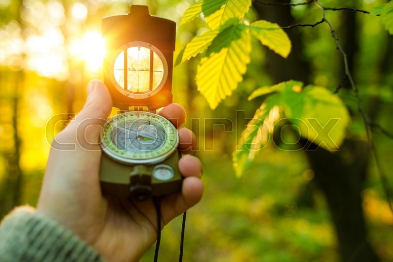 Hiking Adventure with Compact Compass. Looking For the Right Way To Go. Forest Hiker, stock photo