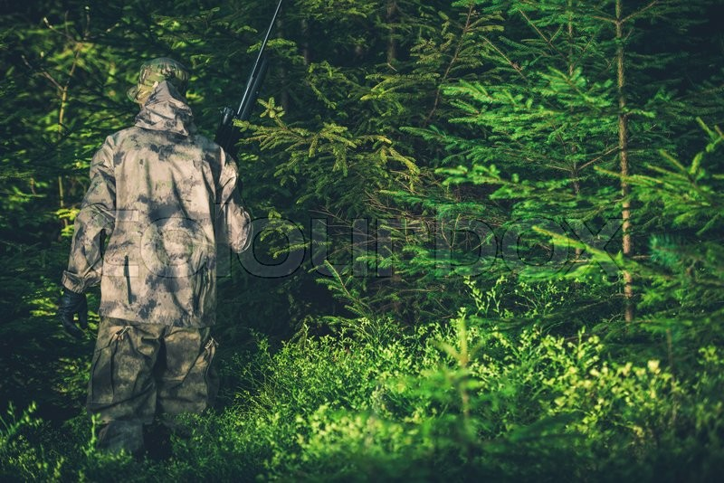 Stock image of 'Illegal Hunting Poacher in the Forest. Poacher with Rifle.'