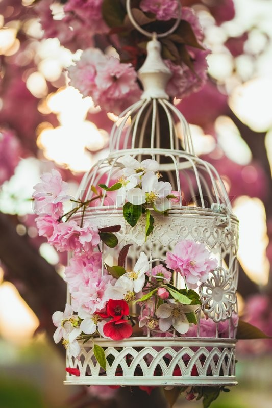 Stock image of 'Bird cage with spring blossom of sakura and fruit flowers. Wedding decorations outdoors in the garden'
