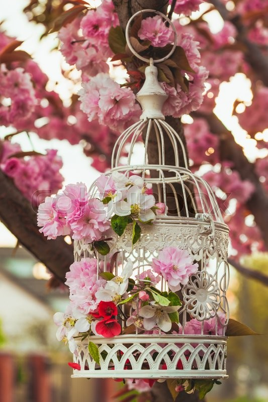 Bird Cage With Spring Blossom Of Sakura And Fruit Flowers Wedding