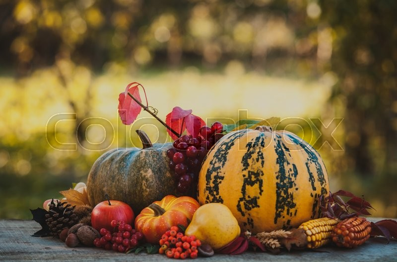 Stock image of 'Happy Thanksgiving still life. Fruits, nuts and vegetables, fall crop on  the table outdoor'