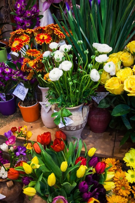 Stock image of 'flower market - beautiful fresh flowers in vases for sale'