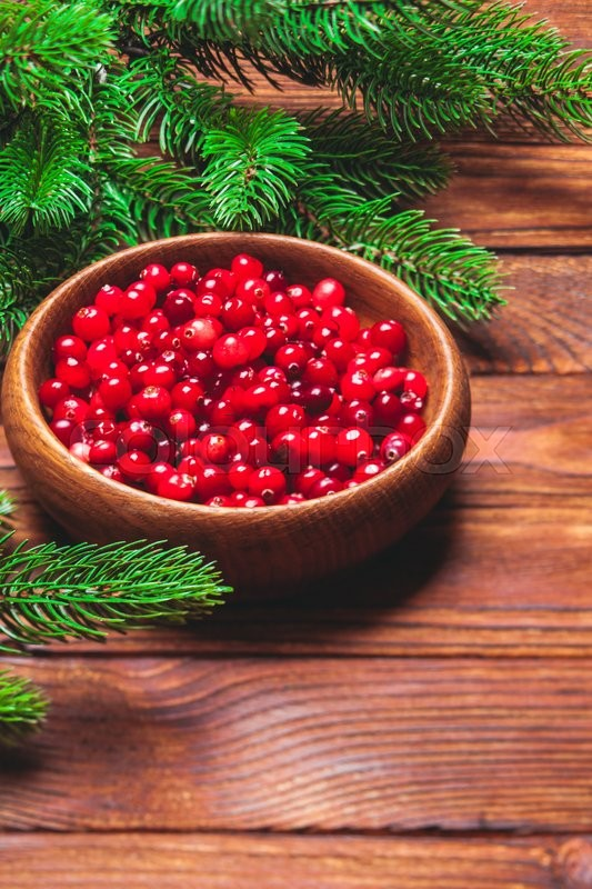 Stock image of 'Fresh cranberries in a wooden bowl and fir branches'
