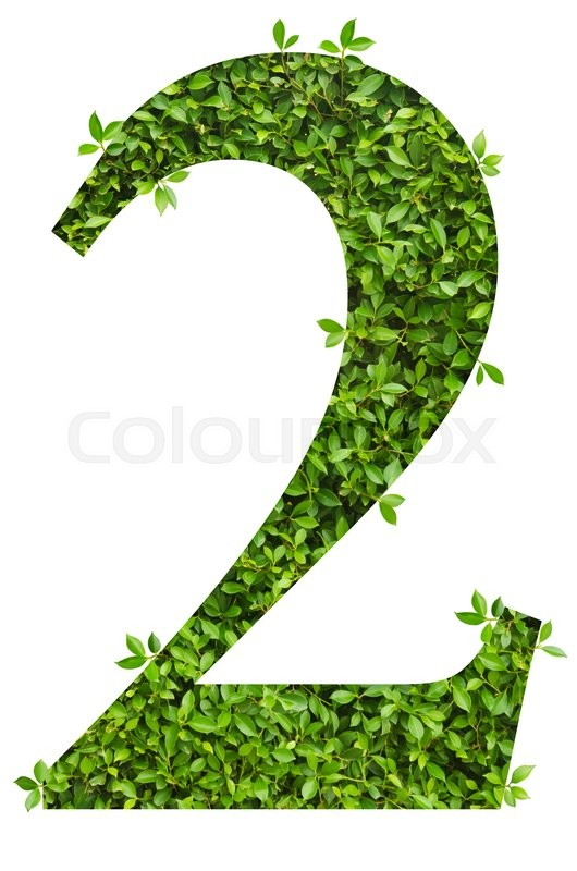 Stock image of 'number 2, alphabet of green leaves on white background'
