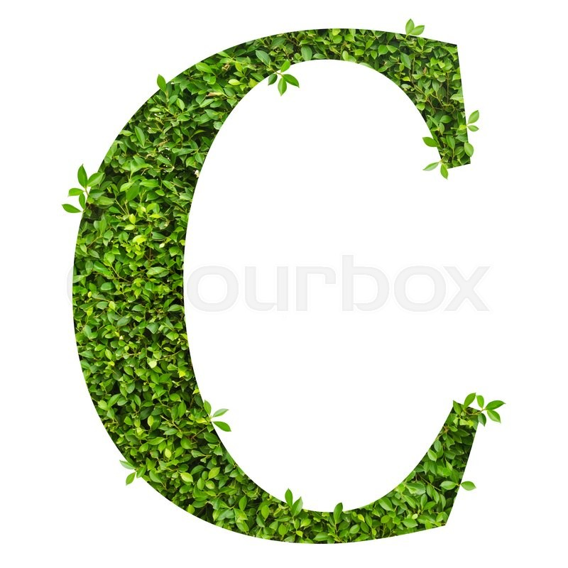 Stock image of 'Letter C, alphabet of green leaves on white background'