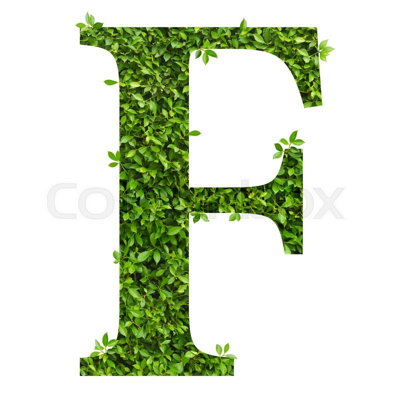 Stock image of 'Letter F, alphabet of green leaves on white background'