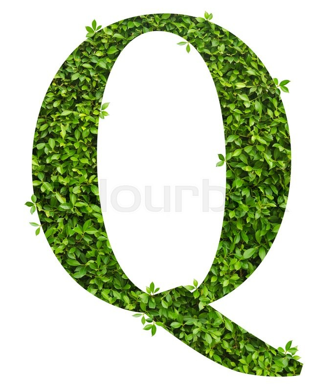 Stock image of 'Letter Q, alphabet of green leaves on white background'