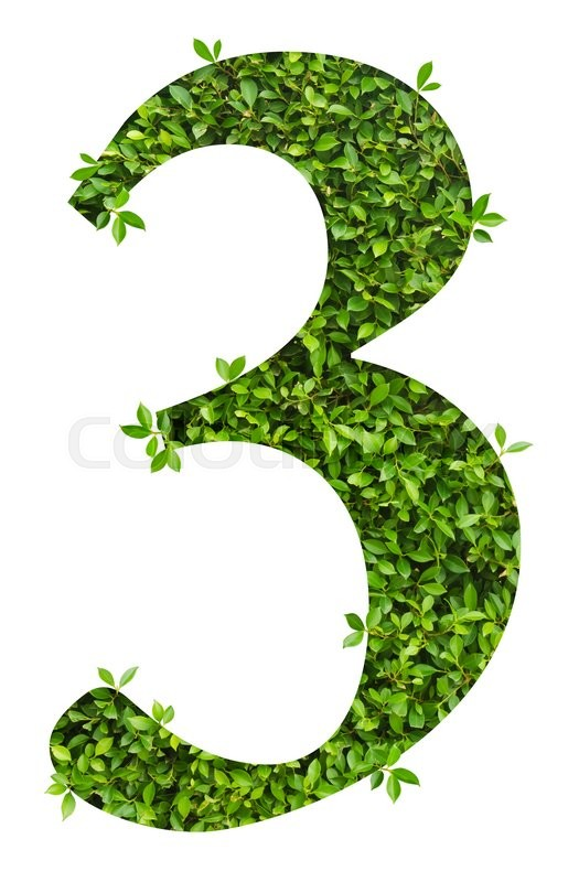 Stock image of 'number 3, alphabet of green leaves on white background'
